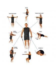 Crossfit fitness bande de résistance - WinMax