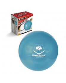 Ballon de Gym Fitness 75 cm - WinMax